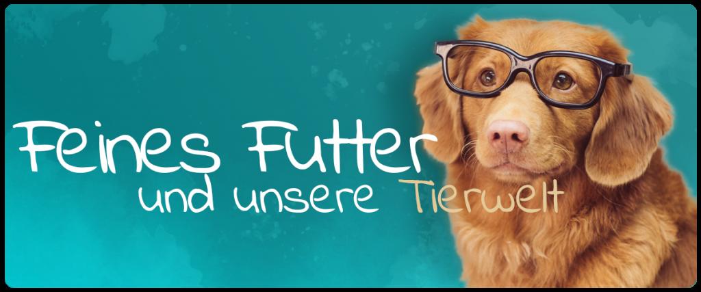 Tierblog Feines Futter Überblick